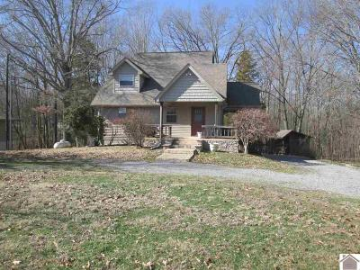 Trigg County Single Family Home For Sale: 437 Blue Springs Blvd.