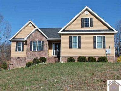 Livingston County, Lyon County, Trigg County Single Family Home For Sale: 310 Rock Bowl