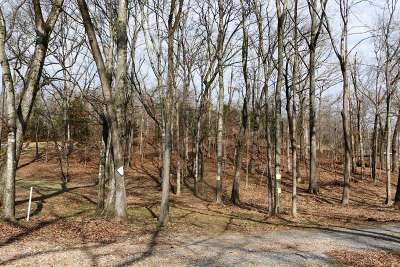 Calloway County Residential Lots & Land For Sale: Lot 30 A Waterway Trail