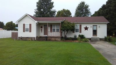 Mayfield Single Family Home For Sale: 768 Tom Drive