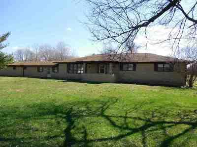 Ledbetter KY Single Family Home For Sale: $139,900