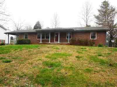 Paducah Single Family Home For Sale: 241 Reid Circle