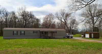 Murray Manufactured Home For Sale: 181 Browns Grove Road