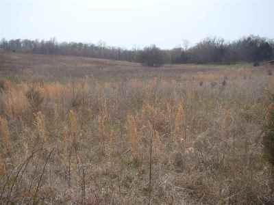 Trigg County Residential Lots & Land For Sale: 11074 Wallonia Road