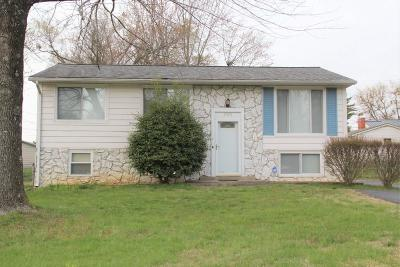 McCracken County Single Family Home For Sale: 250 Seminole Drive