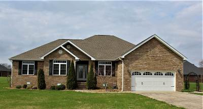 Calloway County Single Family Home For Sale: 122 King Drive