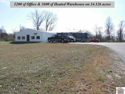 McCracken County Commercial For Sale: 4020 Old Cairo Road