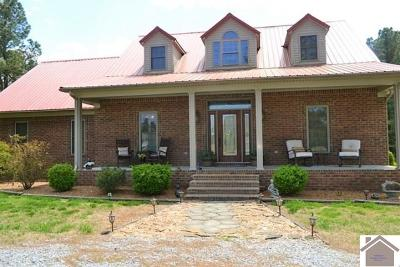 Calloway County, Marshall County Single Family Home For Sale: 94 Norwell Rd