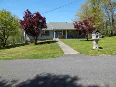 Lyon County, Trigg County Single Family Home For Sale: 362 Peninsula Dr