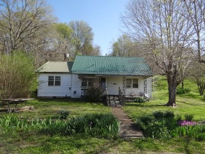 Trigg County Single Family Home For Sale: 360 Boyds Landing Rd