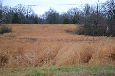 Calvert City KY Residential Lots & Land For Sale: $27,900
