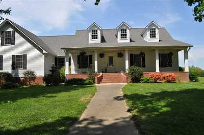 Graves County Single Family Home For Sale: 399 Wingo Road