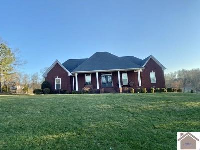 Calloway County, Marshall County Single Family Home For Sale: 267 Masters Circle
