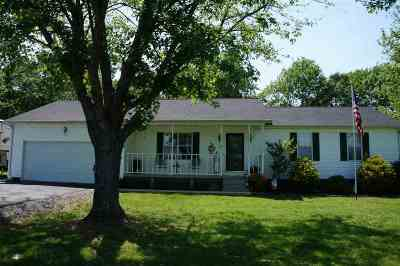Calloway County Single Family Home For Sale: 323 Wells Purdom Drive