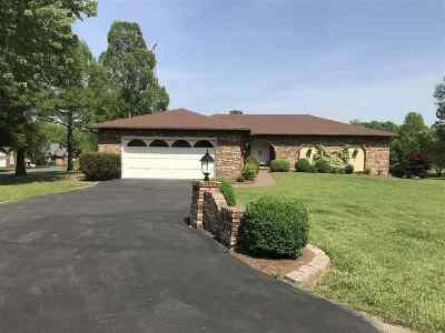 Gilbertsville Single Family Home For Sale: 71 Greenapple Drive