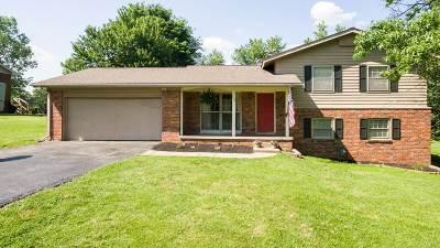 McCracken County Single Family Home For Sale: 161 Canon Drive