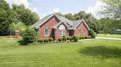 McCracken County Single Family Home For Sale: 7020 Dana