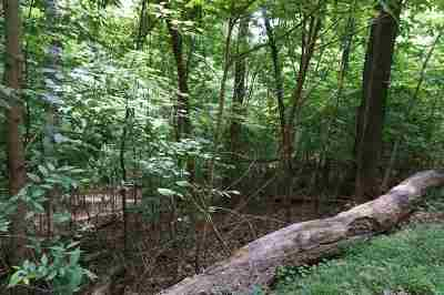 Residential Lots & Land For Sale: Lot 31a Slover Triangle