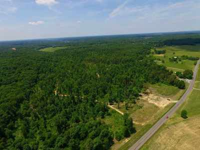Trigg County Residential Lots & Land For Sale: 8000 South Road