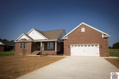 McCracken County Single Family Home For Sale: 3025 Steele Road