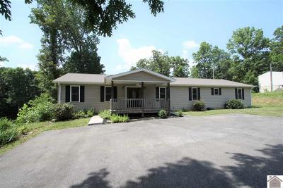 Lyon County, Trigg County Single Family Home For Sale: 772 Chestnut Oak Drive