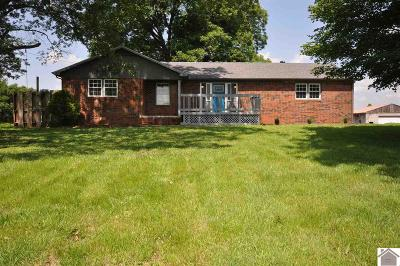 Calloway County Single Family Home For Sale: 69 Green Valley