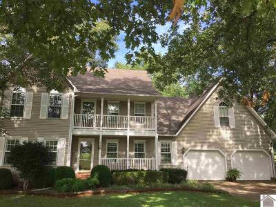 Murray Single Family Home For Sale: 538 S Robertson Road