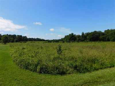 Calloway County Farm For Sale: 935 Grant Rd
