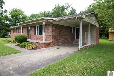 McCracken County Single Family Home For Sale: 130 Chadwick Drive