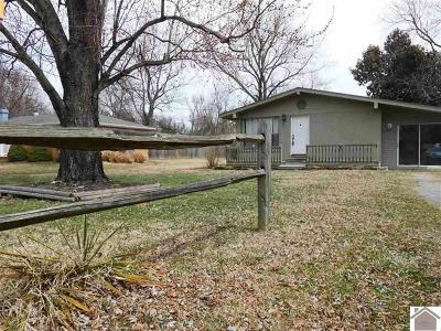 Ledbetter Single Family Home For Sale: 372 Sheila Drive
