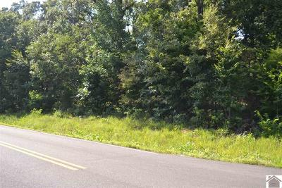 Gilbertsville KY Residential Lots & Land For Sale: $13,000