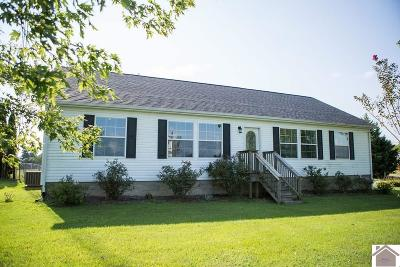 Calloway County Single Family Home For Sale: 285 Redbud Road