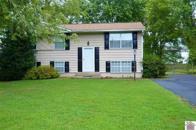 Paducah Single Family Home Contract Recd - See Rmrks: 254 Seminole Drive