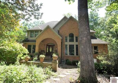Cadiz Single Family Home For Sale: 400 Summerfield Dr
