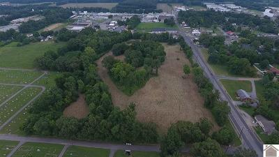 Calloway County Residential Lots & Land For Sale: 402 Chestnut St