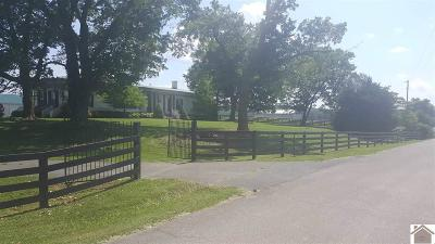 Princeton KY Single Family Home For Sale: $235,000