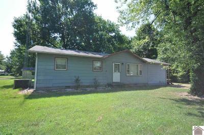 Calvert City Single Family Home For Sale: 191 McCoy