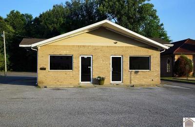 McCracken County Commercial For Sale: 653 Lone Oak Road