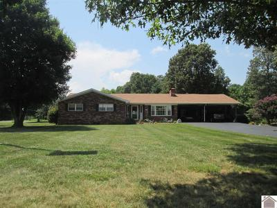 Cadiz Single Family Home For Sale: 209 Riley Hollow Road