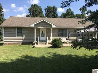 Mayfield Multi Family Home For Sale: 251 Riley Cemetery Rd