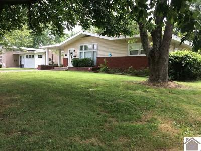 Mayfield Single Family Home For Sale: 119 Lincoln