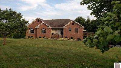 Cadiz KY Single Family Home For Sale: $287,000