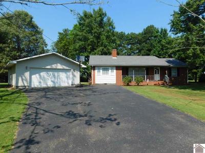 Calloway County Single Family Home For Sale: 1515 Boggess Drive