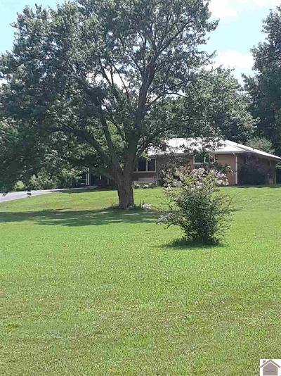 Benton Single Family Home For Sale: 3378 Murray Hwy