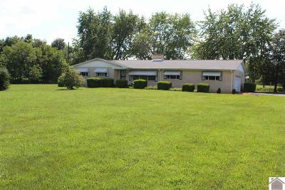 Mayfield Single Family Home For Sale: 3325 State Route 131