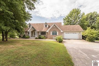 Graves County Single Family Home For Sale: 5645 St Rt 849 East