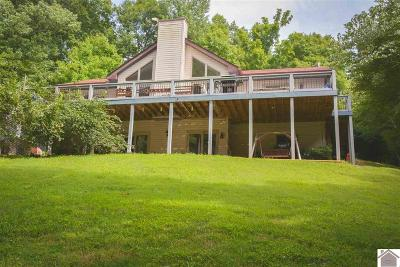 Cadiz, Trigg County, Eddyville, Kuttawa, Grand Rivers Single Family Home For Sale: 163 Wheaton Way