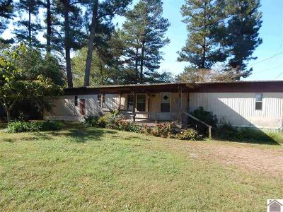 Benton Manufactured Home For Sale: 7792 Aurora Hwy