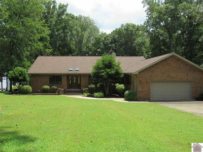 Calloway County Single Family Home For Sale: 73 Woodridge