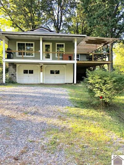Calloway County, Marshall County, Henry County, Tennessee County Single Family Home For Sale: 542 Lakeway Dr